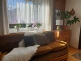 Sofa nachher
